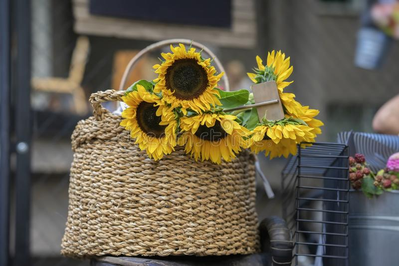 Ramalhete de girassóis brilhantes frescos no close-up da cesta de vime, venda de comércio da cidade das flores nas ruas, rústica foto de stock