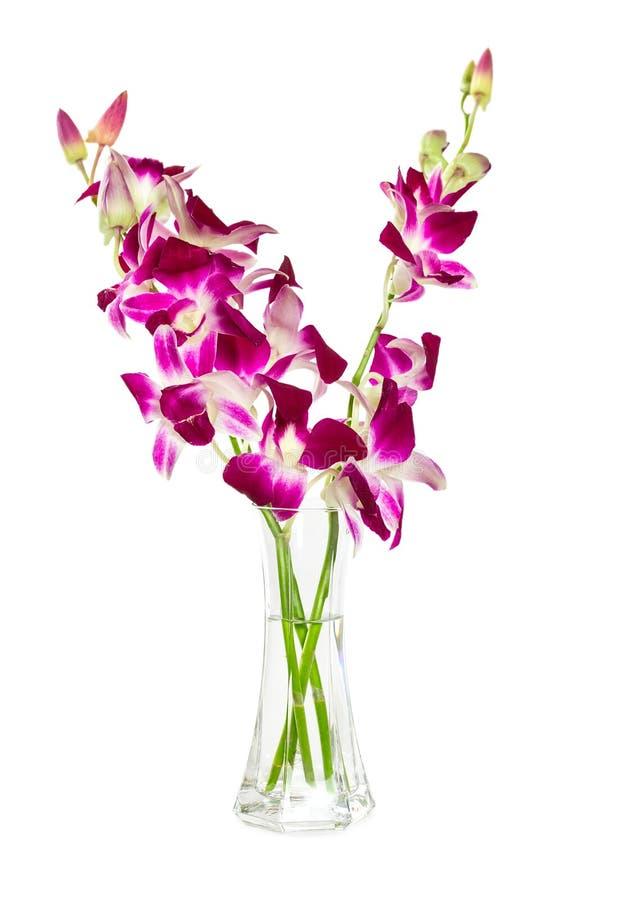 Ramalhete de orquídeas roxas no vaso de vidro fotografia de stock royalty free