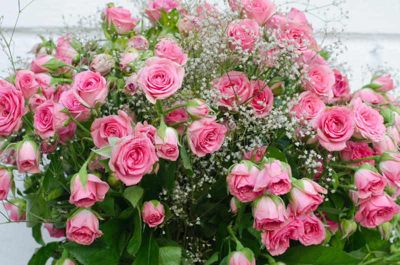 Ramalhete de rosas cor-de-rosa pequenas, close-up foto de stock royalty free