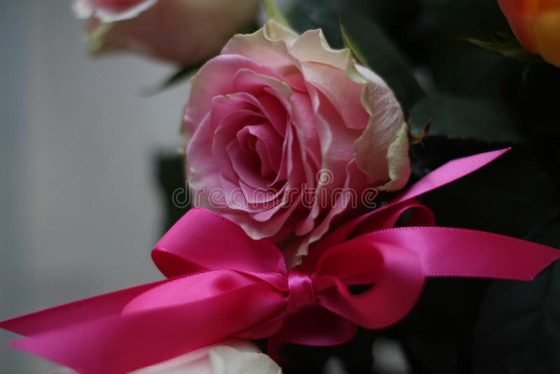 Ramalhete de rosas cor-de-rosa Decoração floral romântica Ainda vida floral romântica foto de stock
