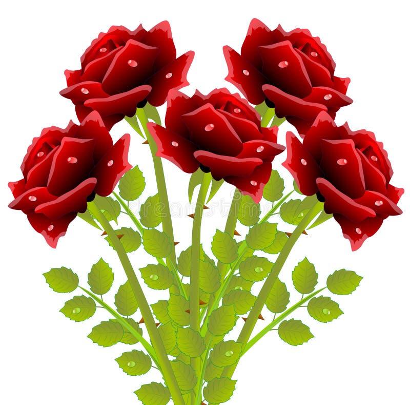 Ramalhete de rosas vermelhas em um fundo branco ilustração do vetor