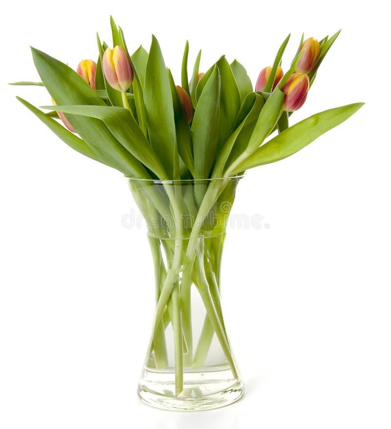Ramalhete de tulipas holandesas no vaso imagens de stock royalty free