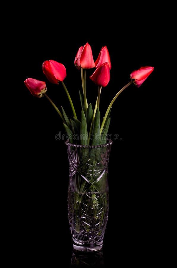 Ramalhete de tulipas vermelhas em um fundo preto foto de stock royalty free