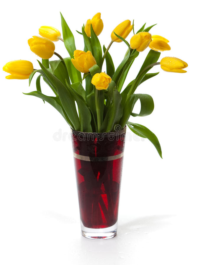 Ramalhete de tulips amarelos imagens de stock royalty free