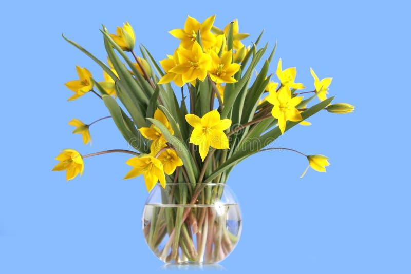 Download Ramalhete De Tulips Amarelos Em Um Vaso De Vidro Imagem de Stock - Imagem de fundo, amarelo: 12809587