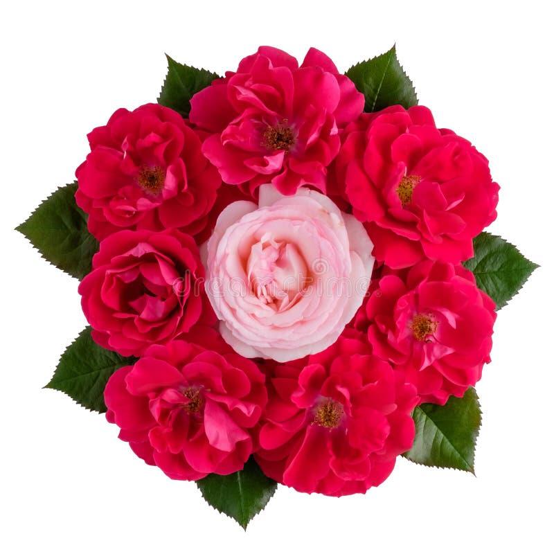 Ramalhete de um cor-de-rosa e muitas rosas vermelhas isoladas no branco fotos de stock