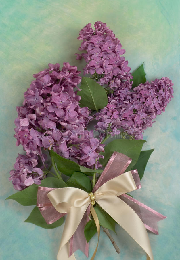 Ramalhete de um lilac foto de stock royalty free
