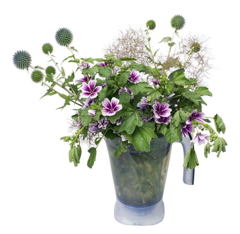 Ramalhete do cardo das flores selvagens imagens de stock
