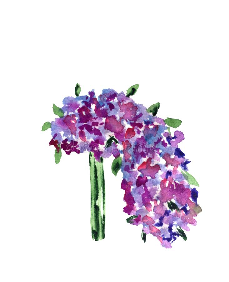 Ramalhete do casamento da aquarela de flores selvagens de lilás, do rosa e de cores azuis ilustração royalty free