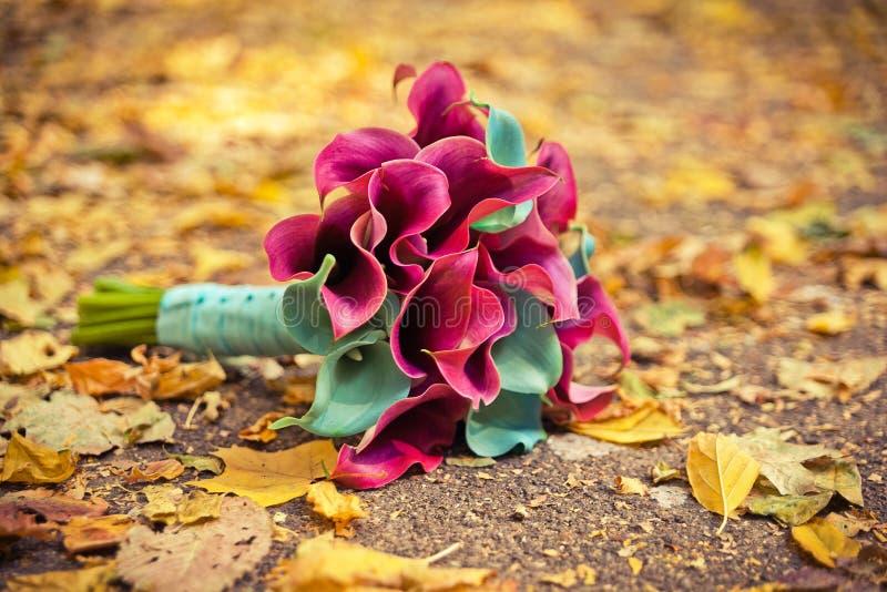 Ramalhete do casamento de callas coloridos imagem de stock royalty free