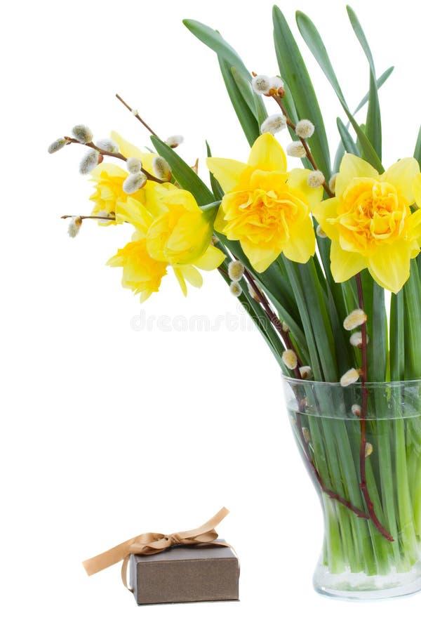 Ramalhete dos daffodils com catkins foto de stock