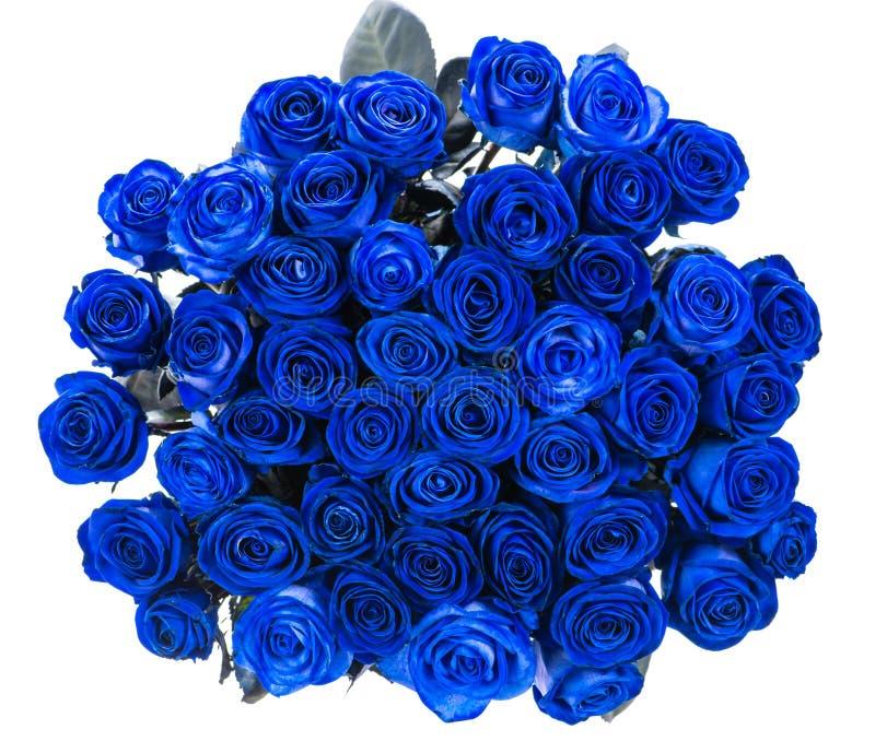 Ramalhete do isolado azul das rosas imagens de stock