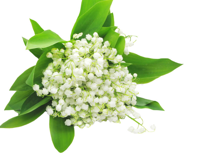 Ramalhete do lírio das flores do vale foto de stock royalty free