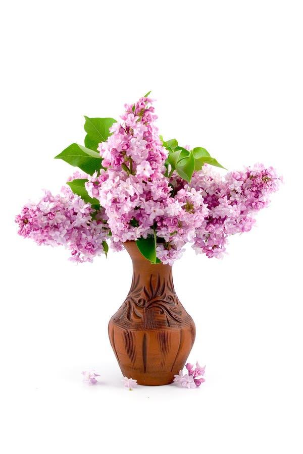 Ramalhete do Lilac fotografia de stock