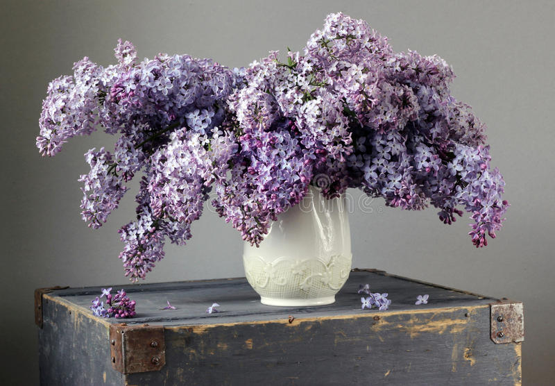 Ramalhete do Lilac foto de stock royalty free