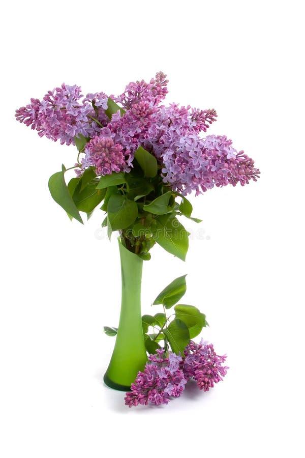 Ramalhete do Lilac no vaso verde imagens de stock