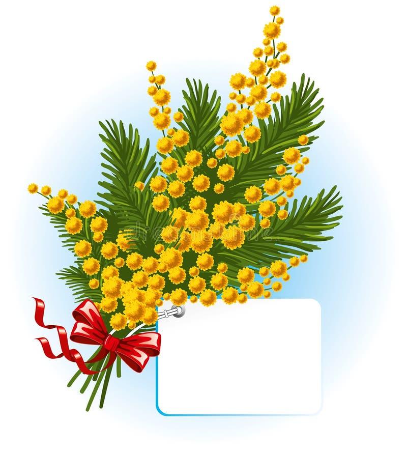 Ramalhete do mimosa e do miosótis ilustração do vetor