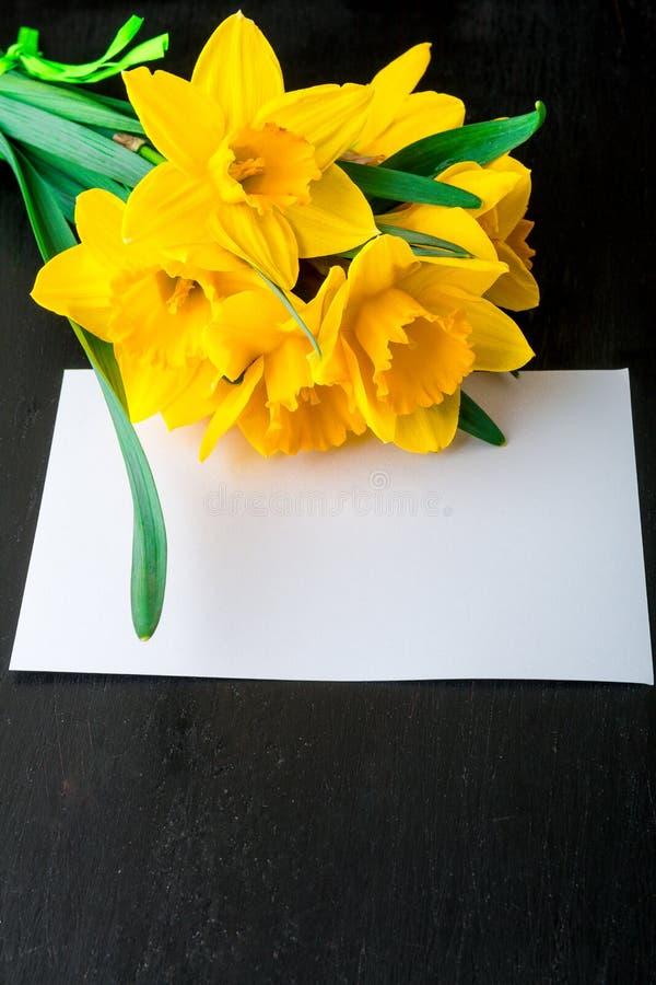 Ramalhete do narciso amarelo perto do cartão vazio no fundo preto Vista superior Copie o espaço Dia de mães ou dia das mulheres c foto de stock