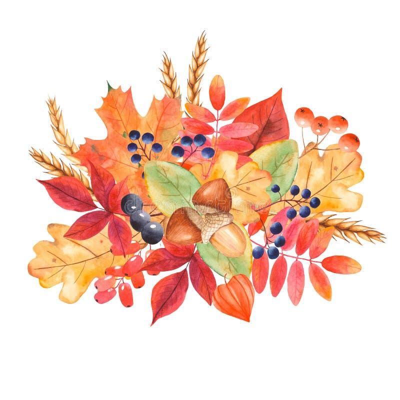 Ramalhete do outono da aquarela das folhas e das bagas ilustração royalty free