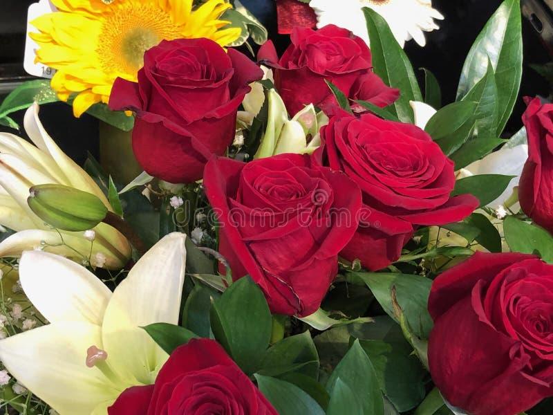 Ramalhete do rosas vermelhas imagem de stock