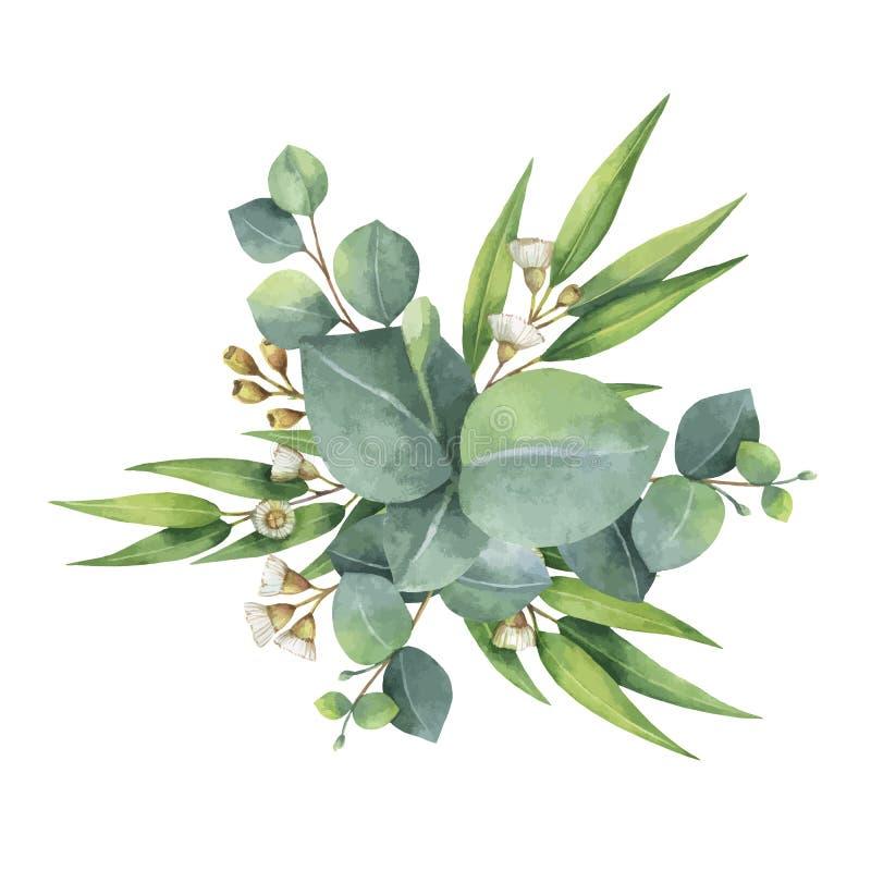 Ramalhete do vetor da aquarela com as folhas e ramos verdes do eucalipto ilustração royalty free