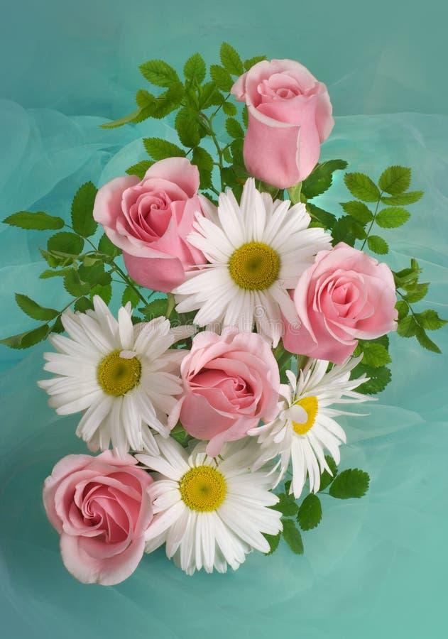 Ramalhete dos camomiles e das rosas no fundo verde branco imagem de stock