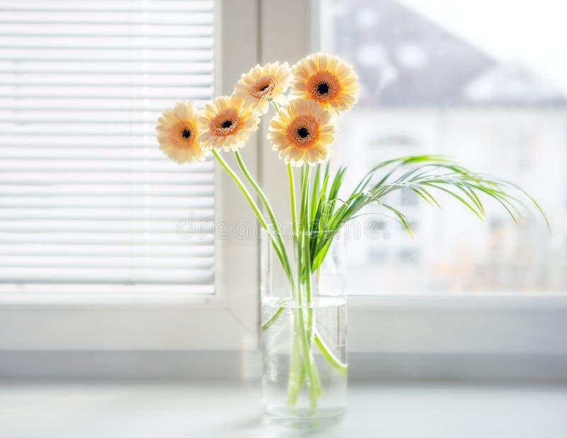 Ramalhete dos Gerberas no vaso na soleira com luz do dia brilhante imagem de stock royalty free