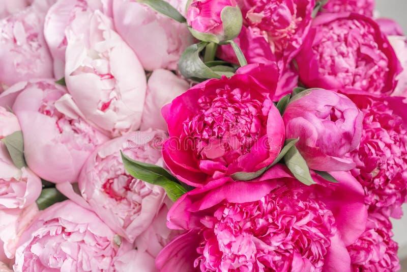 Ramalhete elegante de muitas peônias do fim cor-de-rosa da cor acima Flor bonita para algum feriado Lotes de consideravelmente e imagens de stock royalty free
