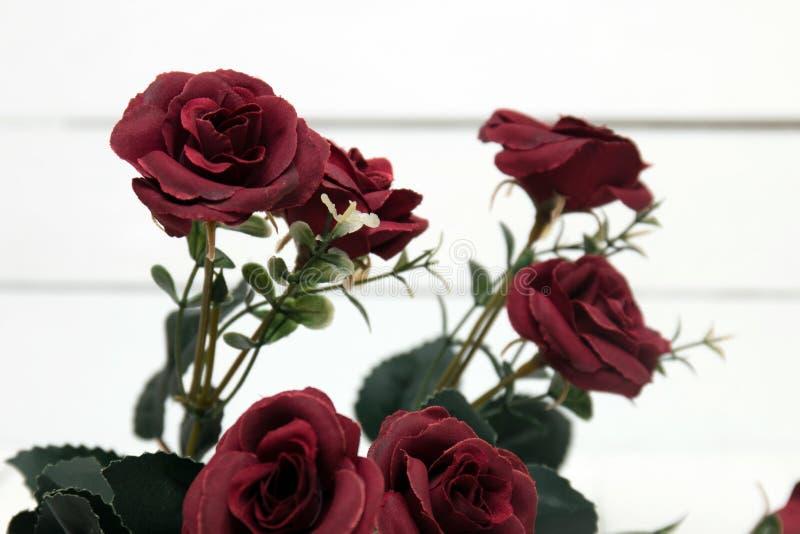 Ramalhete falsificado das rosas vermelhas isoladas em um fundo branco foto de stock royalty free