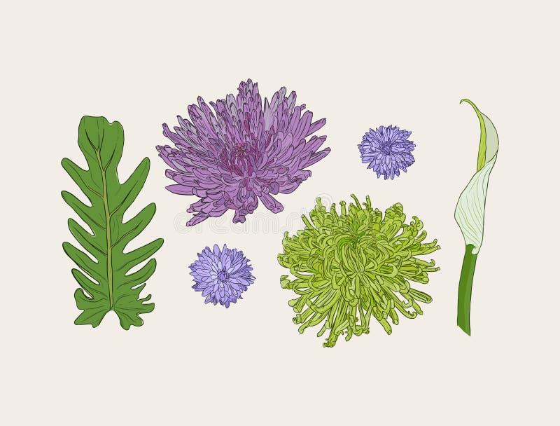 Ramalhete floral com as flores tiradas mão da mola ilustração stock