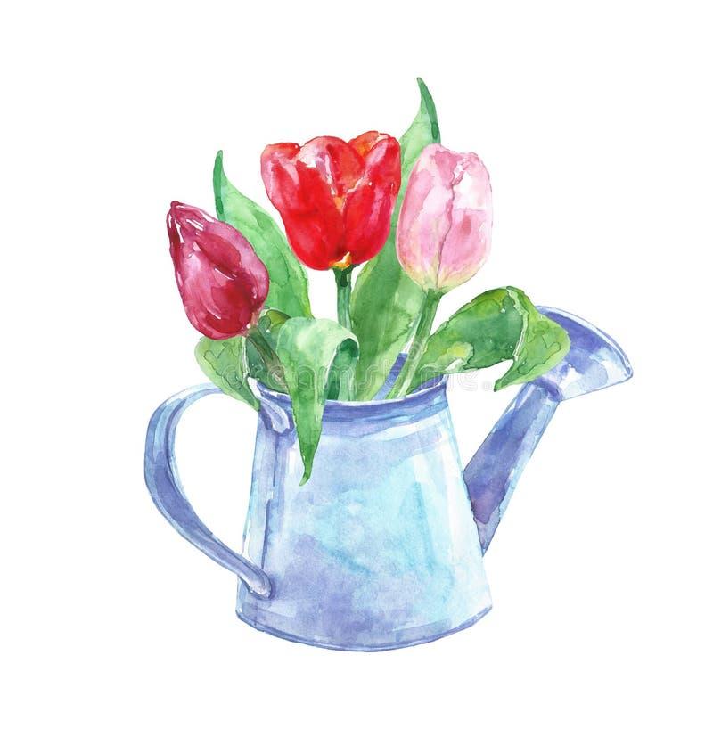 Ramalhete floral da mola da aquarela em um potenciômetro do vintage Ajuste das flores pintados à mão da tulipa em uma lata molhan ilustração royalty free