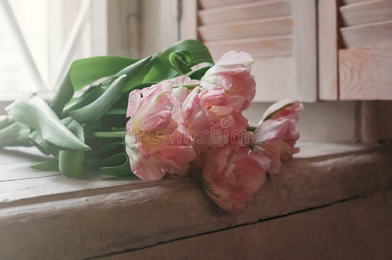 Ramalhete focalizado macio das flores no peitoril da janela fotografia de stock