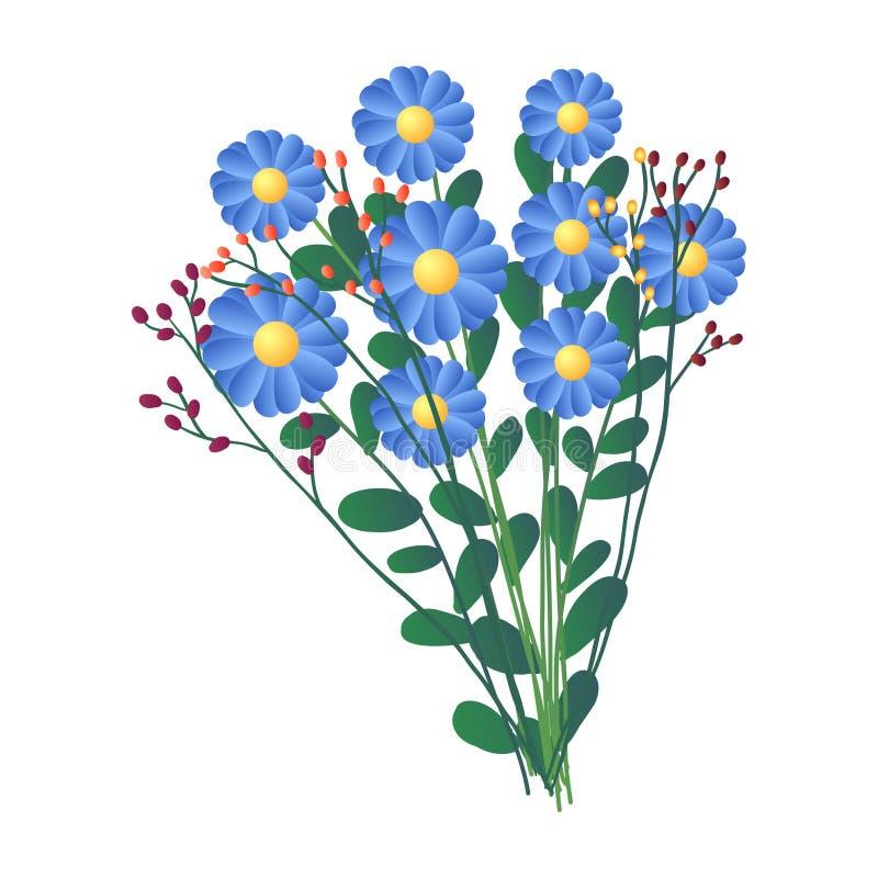 Ramalhete fresco das flores azuis do campo isoladas no fundo branco ilustração do vetor
