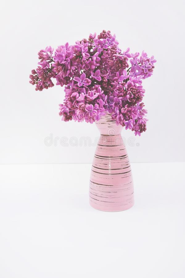 Ramalhete lilás de florescência no vaso cor-de-rosa isolado no fundo branco imagens de stock royalty free