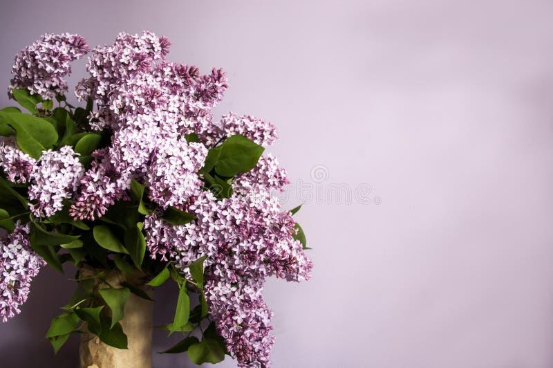 Ramalhete lilás no vaso no fundo roxo, espaço da cópia imagem de stock royalty free