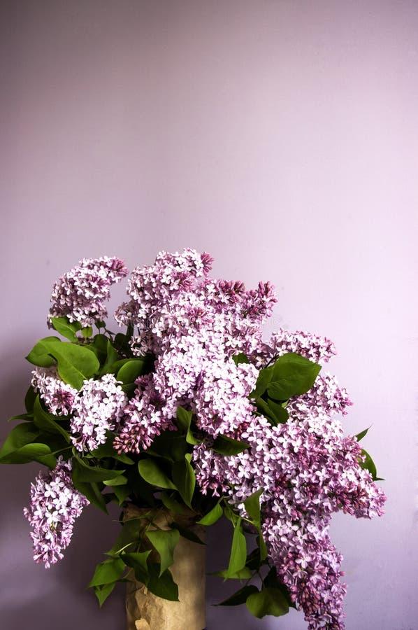 Ramalhete lilás no vaso no fundo roxo Foto vertical da vinheta, espaço da cópia fotos de stock