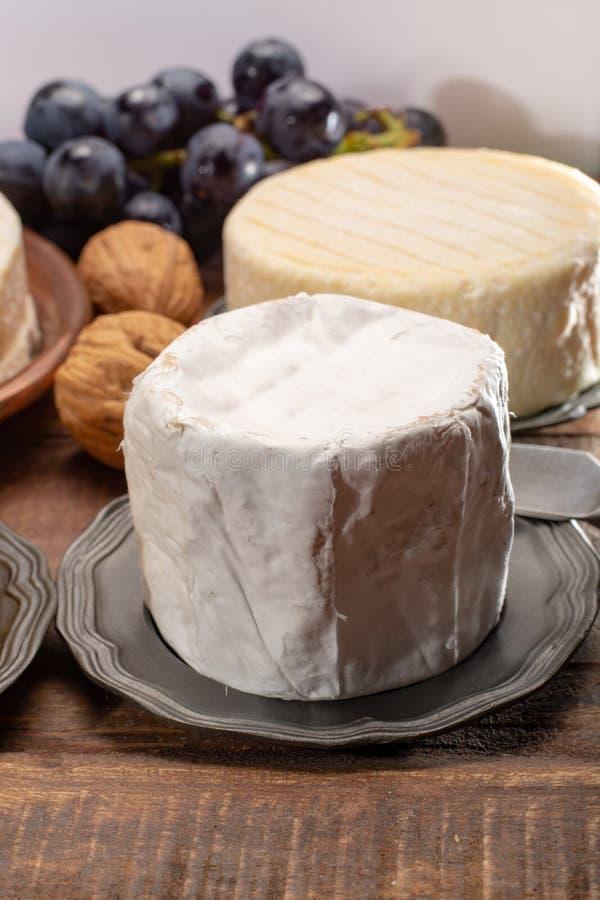 Ramalhete macio Des Moines do queijo do leite de vaca do molde branco belga de fotografia de stock