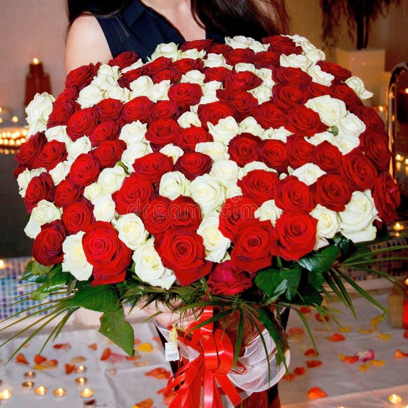 Ramalhete maravilhoso e muito grande de rosas vermelhas e brancas frescas para o dia do ` s do Valentim, o 8 de março, o aniversá imagens de stock royalty free