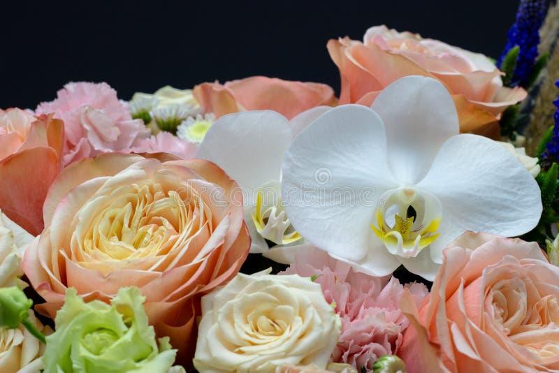 Ramalhete misturado das flores próximas acima do fundo escuro da orquídea branca foto de stock royalty free