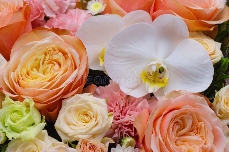 Ramalhete misturado das flores próximas acima do phalaenopsis branco da orquídea fotos de stock royalty free