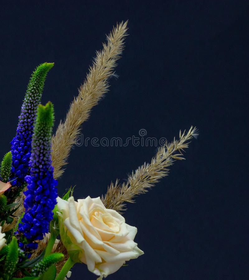 Ramalhete misturado do espaço livre do close-up das flores para seu texto foto de stock royalty free