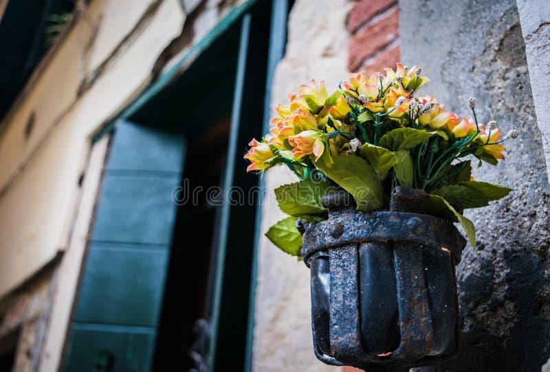 Ramalhete no suporte rústico da planta do ferro forjado na parede, Veneza, Itália foto de stock