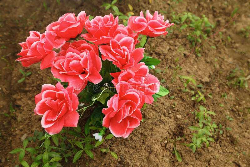 Ramalhete Non-natural das rosas na terra na sepultura fotos de stock