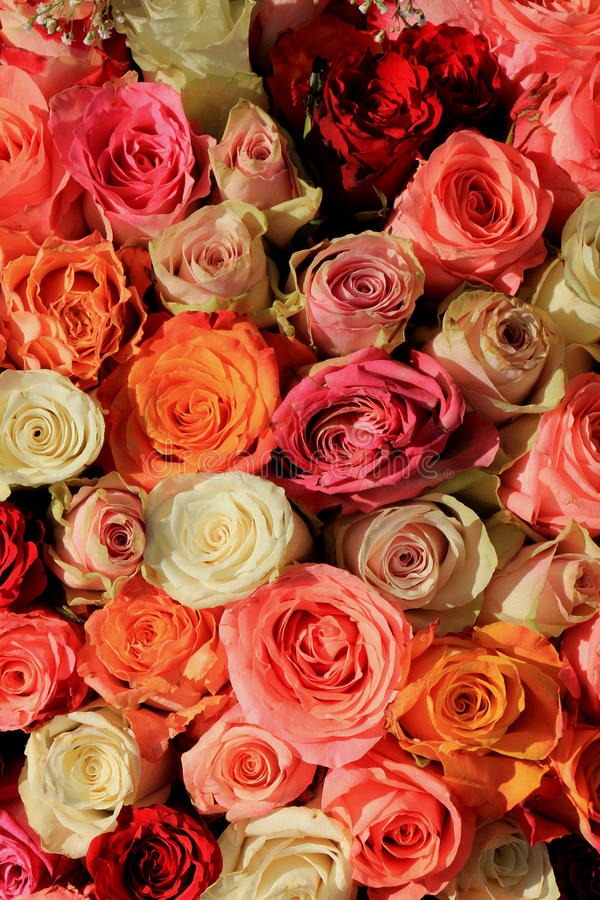 Ramalhete nupcial cor-de-rosa e alaranjado misturado fotografia de stock