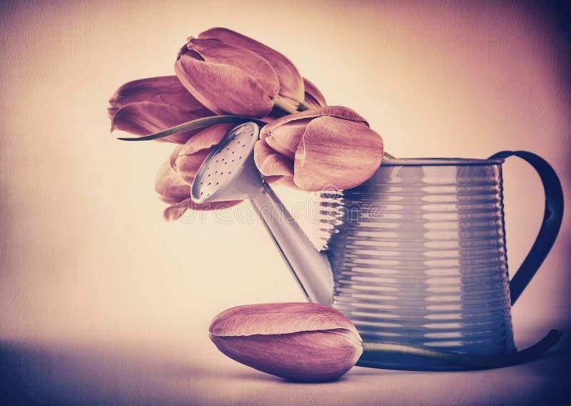 Ramalhete retro das tulipas do estilo fotos de stock