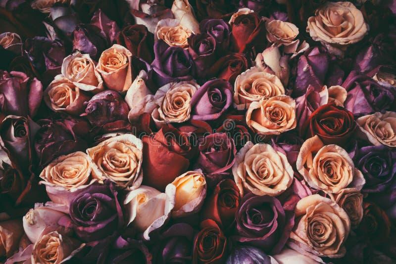 Ramalhete romântico do vintage das rosas imagens de stock