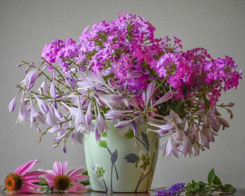 Ramalhete roxo da flor do flox fotos de stock