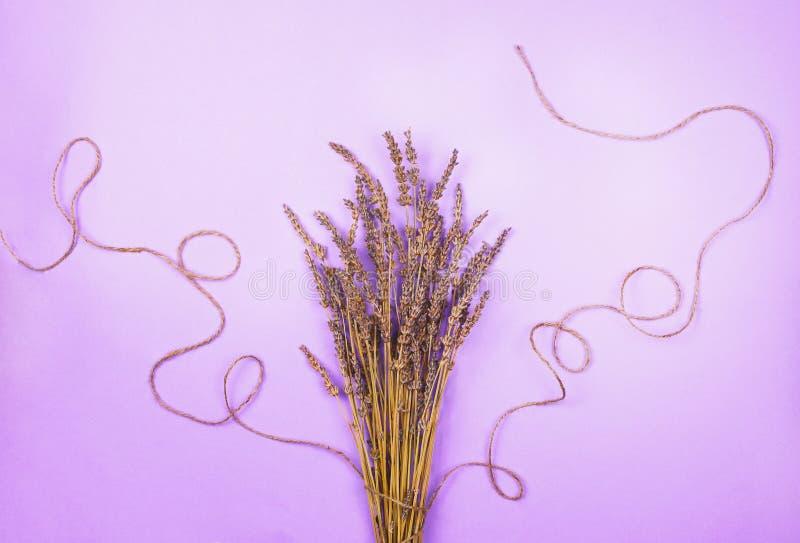 Ramalhete secado da alfazema com uma linha em um fundo violeta ilustração royalty free