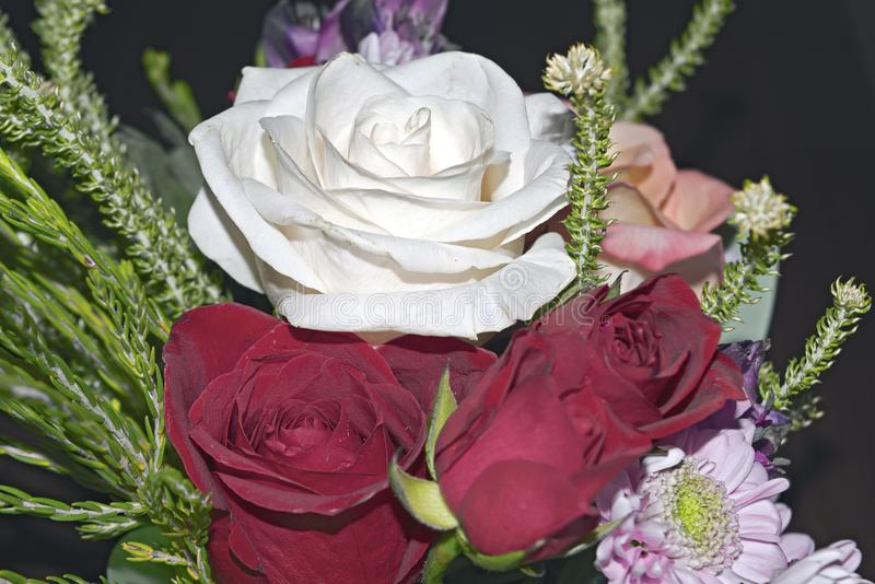 Ramalhete vivo bonito de flores misturadas foto de stock royalty free