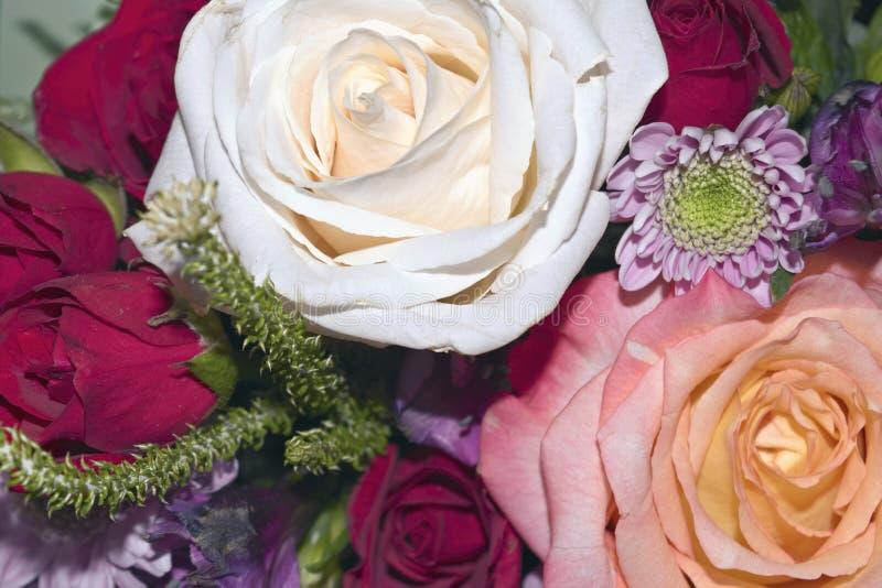 Ramalhete vivo bonito de flores misturadas imagens de stock